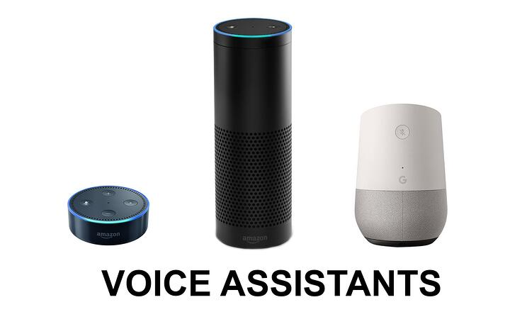 Voice Assistants Amazon Alexa Echo and Google Home Assistant