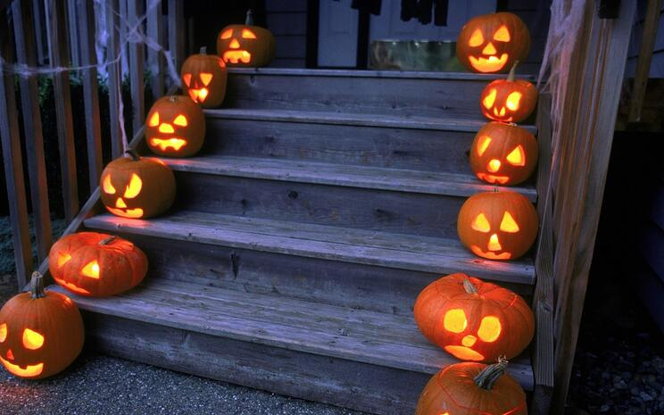Safely provide an illuminated path by lining the walkway with carved Jack-o'-lanterns lit up with battery-operated tea lights instead of candles.