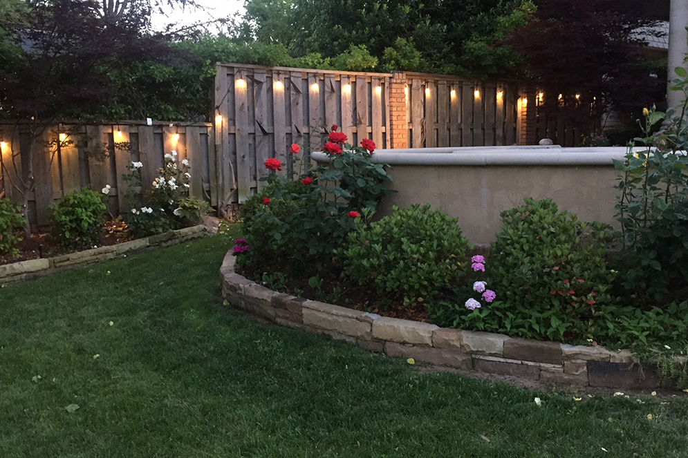 Add Enbrighten string lights to your backyard for your outdoor events this summer.